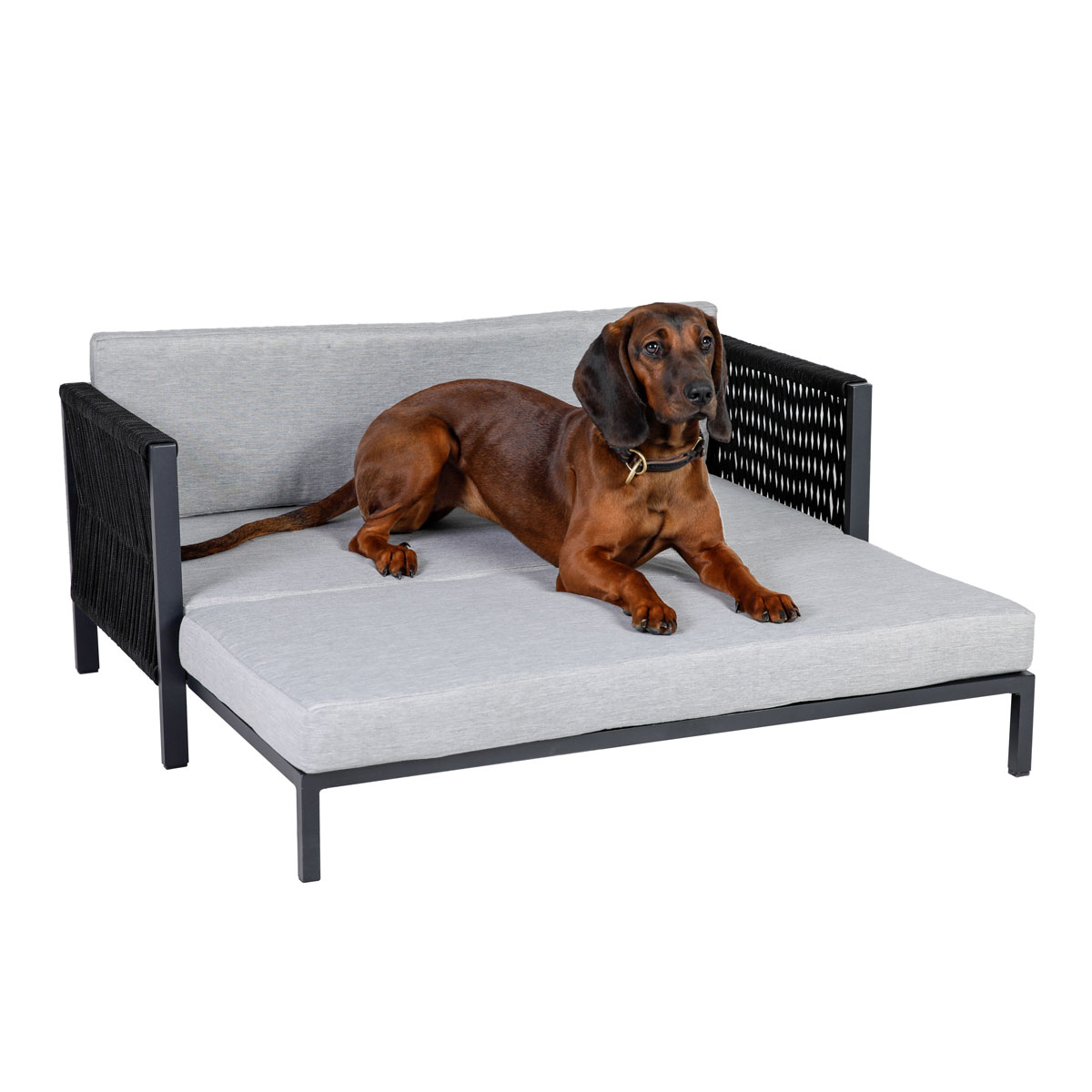"greenmotion pet Hunde-Lounge ""Rope"",90x40x50/100 cm, Aluminium, grau"