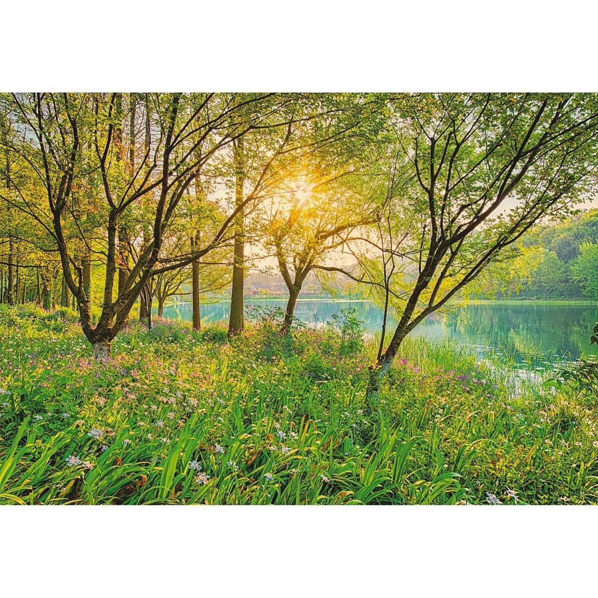 Komar Fototapete, Spring Lake 368/254 cm