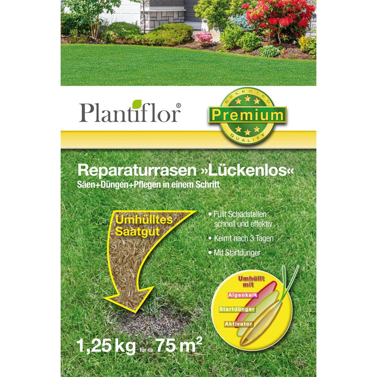 """Plantiflor Premium-Reparaturrasen """"Lückenlos"""", 1,25 kg"""